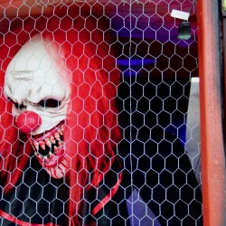 Halloween Carnival 2019 - Part 1 - Halloween Carnival 2019 Part 1 - 14
