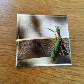 A praying mantis in the garage - 2 inch magnet