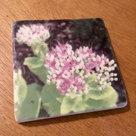 Another pink and white flower - marble coaster