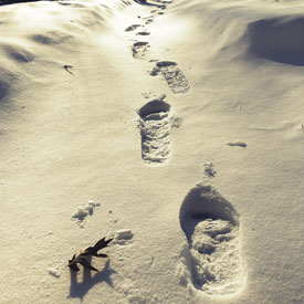 Footprints in the snow - photo print