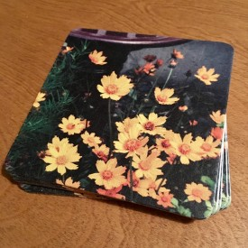 Orange flowers by the bird bath - coaster set