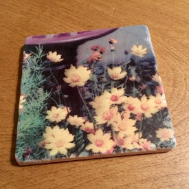 Orange flowers by the bird bath - marble coaster