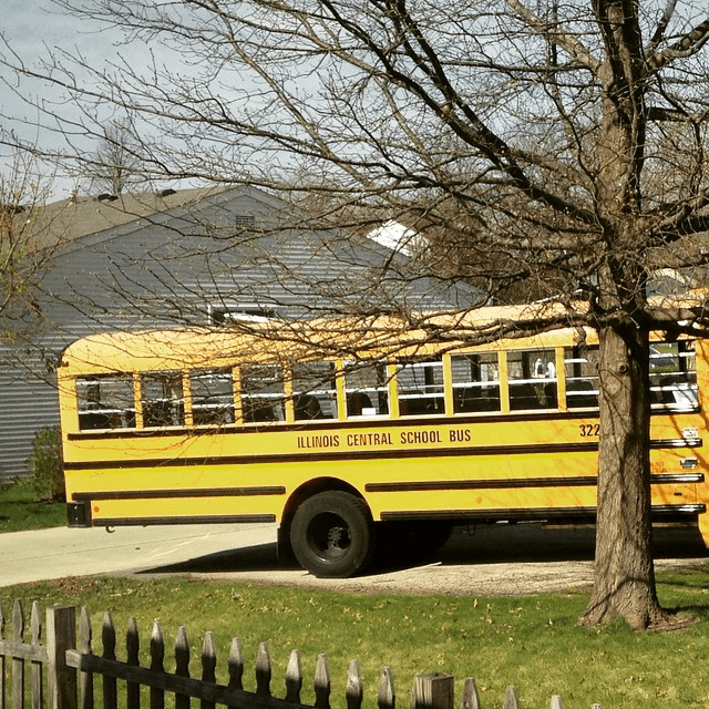school bus diagonal in the driveway