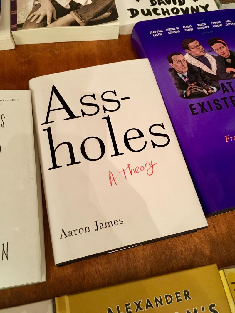 Ass holes a theory book
