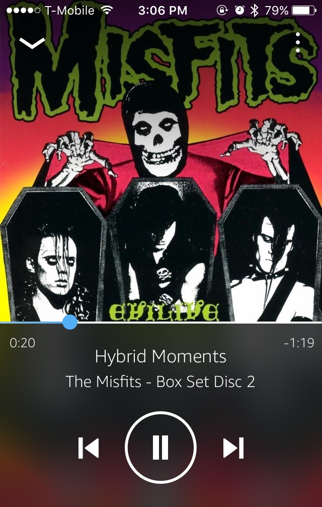 Hybrid Moments by The Misfits