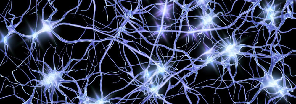 A network of neurons each transmitting our pulses to one another in the global space