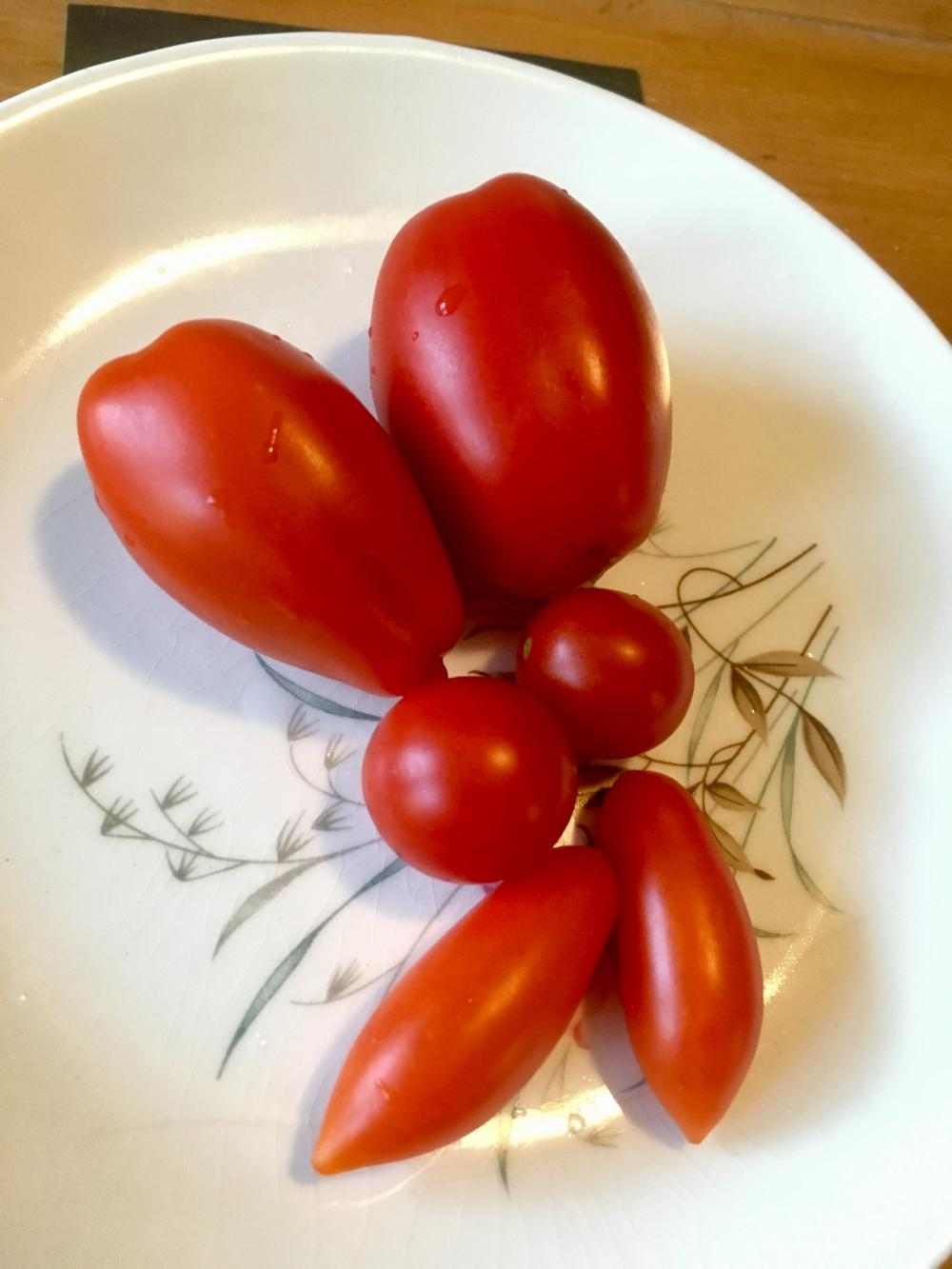 Three kinds of tomatoes