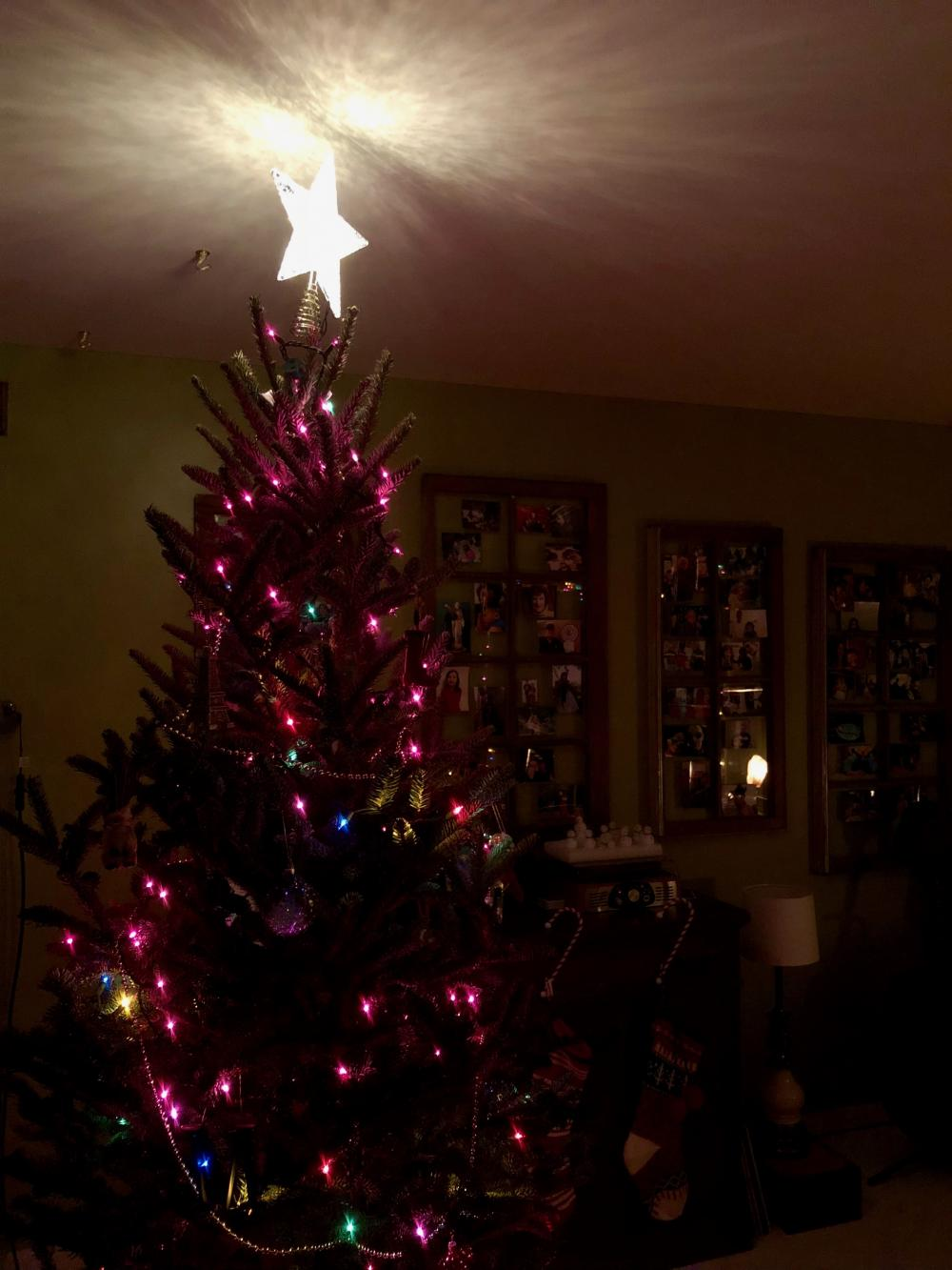Christmas tree with lit star