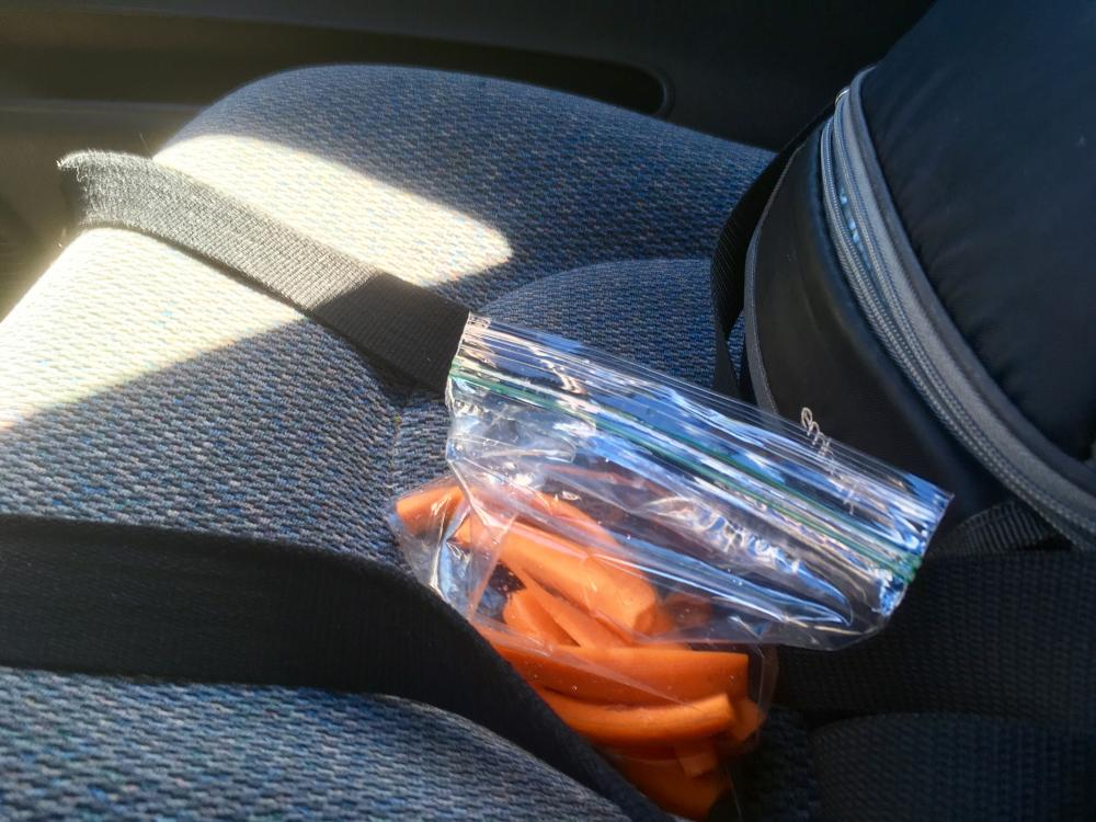 Eating carrots on the drive home