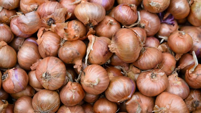 Google's Algorithm Is Lying to You About Onions and Blaming Me for It