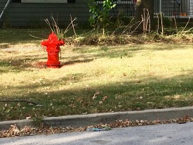 Hydrant on Division