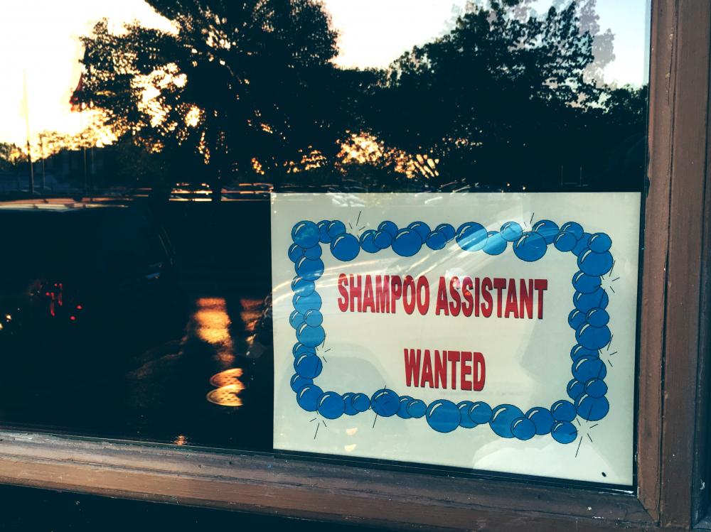 Shampoo assistant wanted