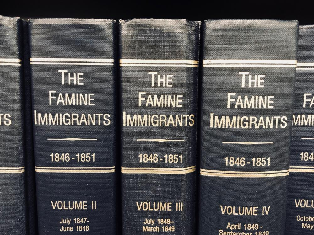 The Famine Immigrants