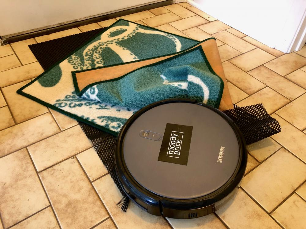 Robot vacuum eating the rug