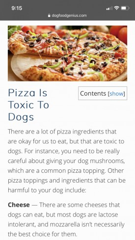 Pizza Is Toxic To Dogs