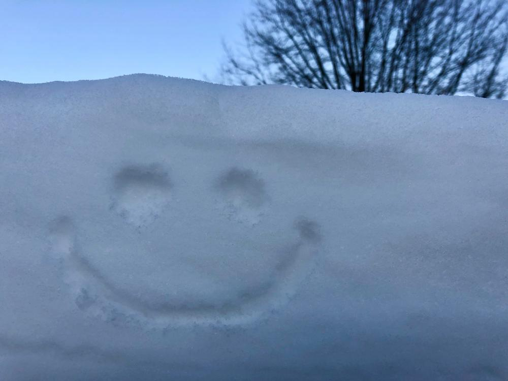 Smiley in the snowdrift