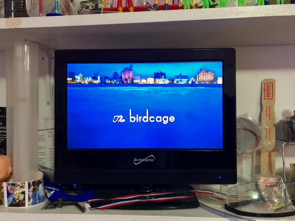 The Birdcage on the TV