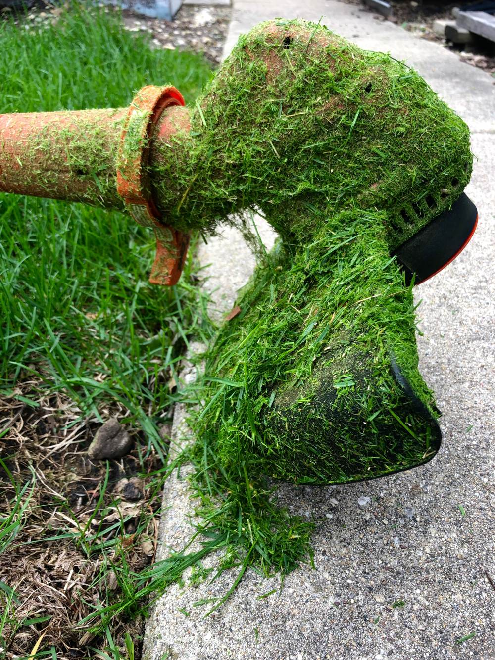 Weed Eater Seuss