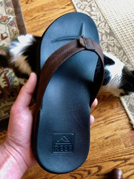 REEF sandal with cat