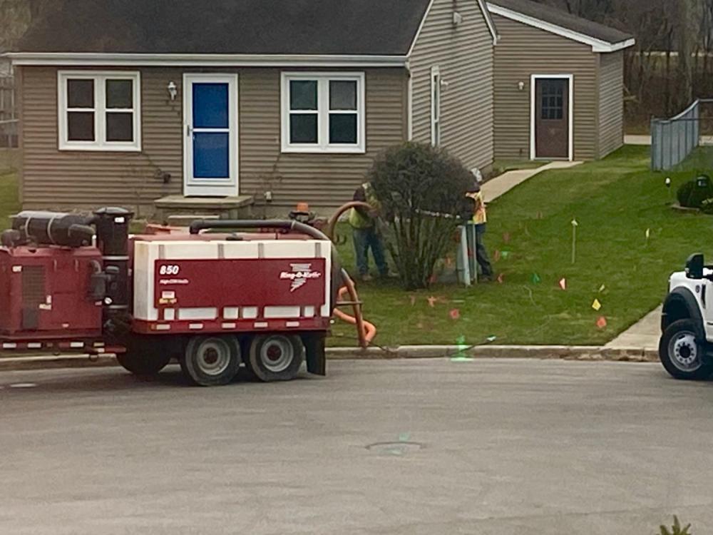 Neighborhood bush vacuuming