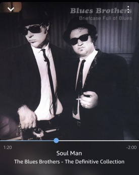 Blues Brother Soul Man now play