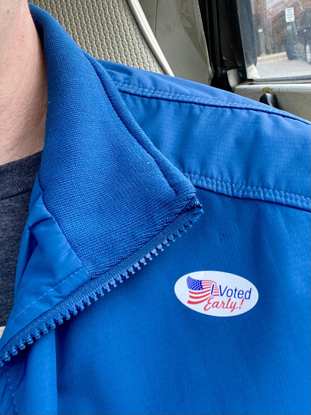 I Voted Early in 2020